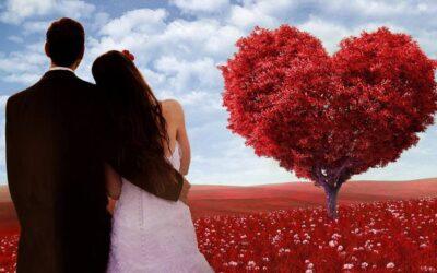 Curso: Um Novo Amor – (para mulheres)